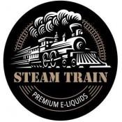 STEAM TRAIN (9)